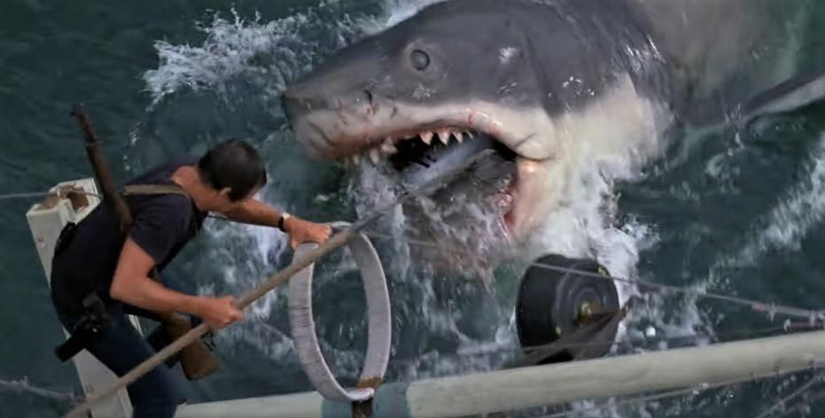"""""""Lo squalo"""", 45 anni fa usciva nelle sale italiane il capolavoro di Spielberg"""
