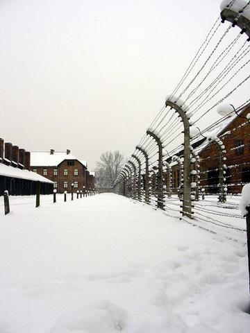Giorno della Memoria, 10 libri che raccontano l'Olocausto